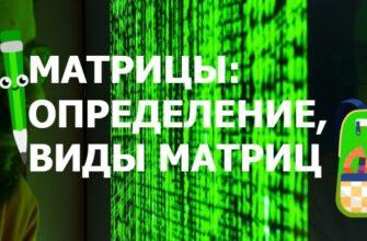 Что такое матрица определение и виды матриц